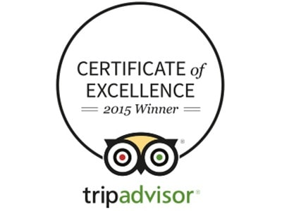 The Certificate of Excellence logo