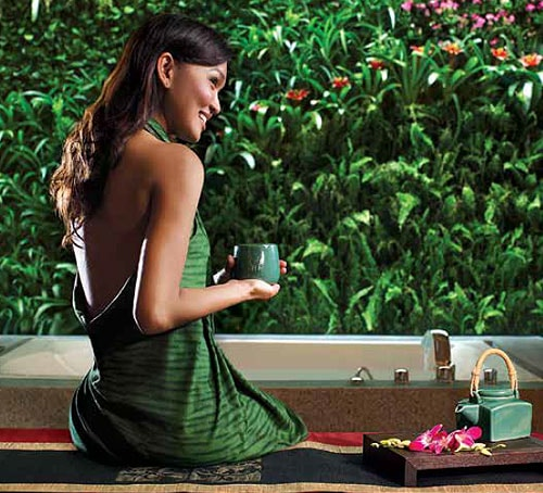 Banyan Tree Spa promo