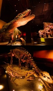 Dinosaurs Dawn to Extinction exhibit at ArtScience Museum