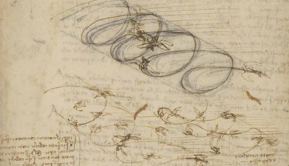 Studies on the Flight of Birds 1505 F.845 recto  Leonardo da Vinci