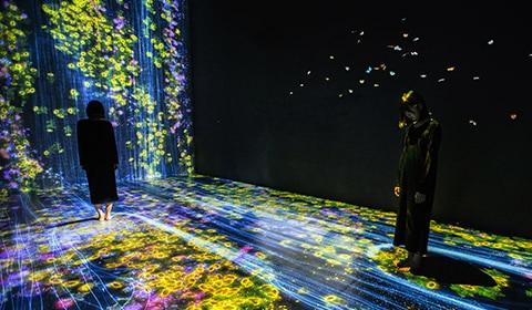 FUTURE WORLD: Where Art Meets Science