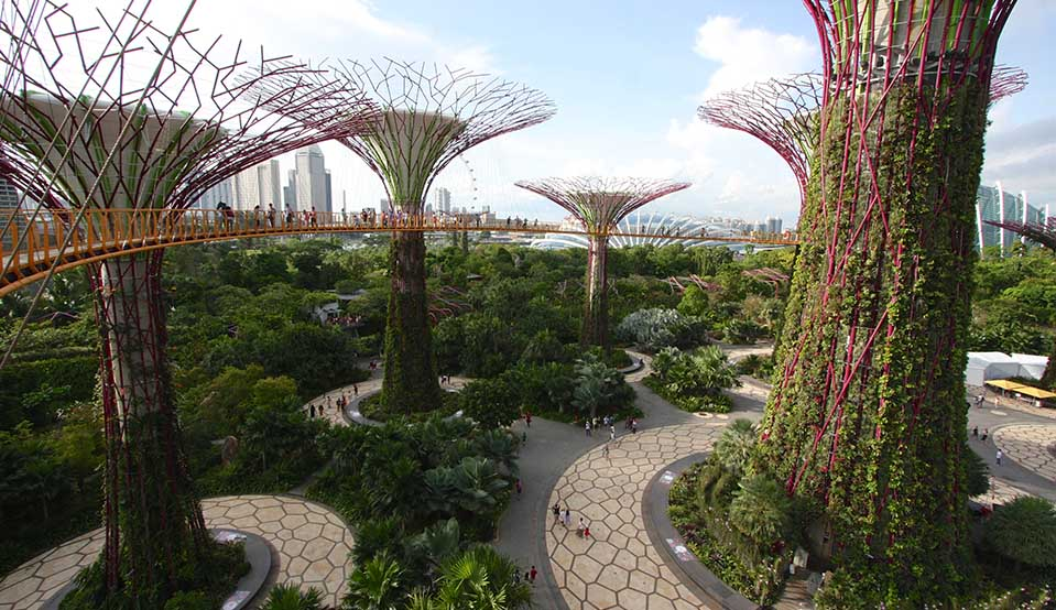 Gardens By The Bay Singapore Travel Guide Marina Bay Sands