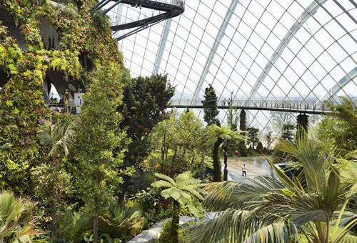 Conservations in Gardens by the Bay