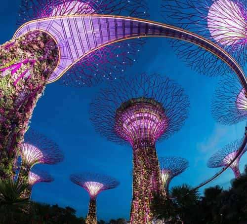 Best cocktails - Review of Marina Bay Sands Skypark