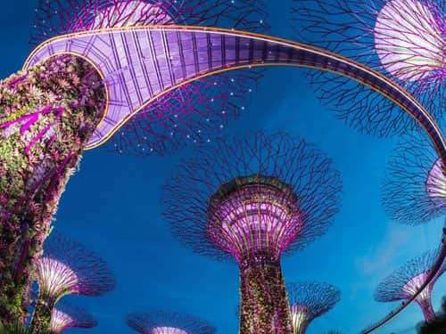 Singapore Visitors Guide