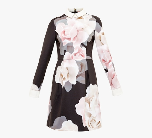 Porcelain Rose collared dress from Ted Baker