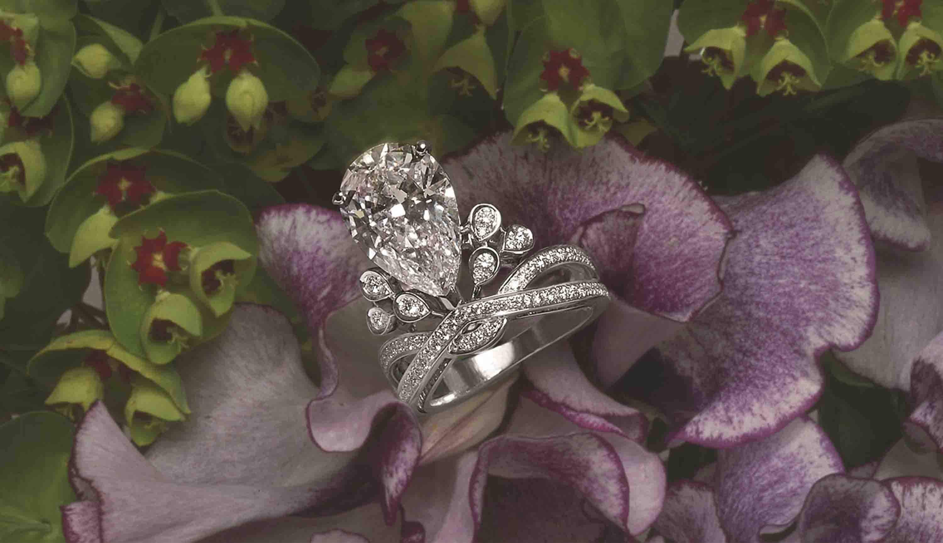 Aigrette Impériale ring
