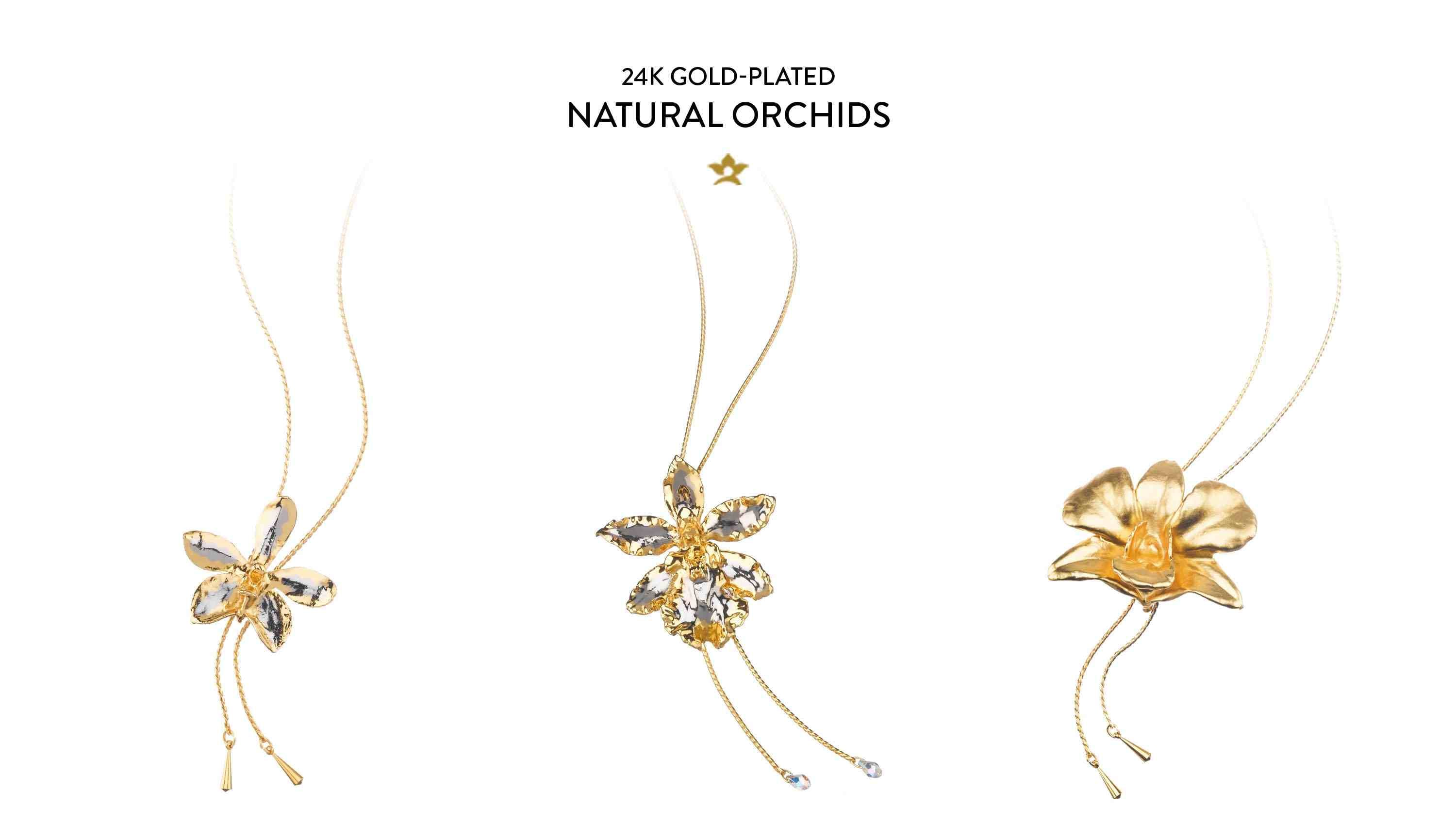 24K Gold-Plated Natural Orchids