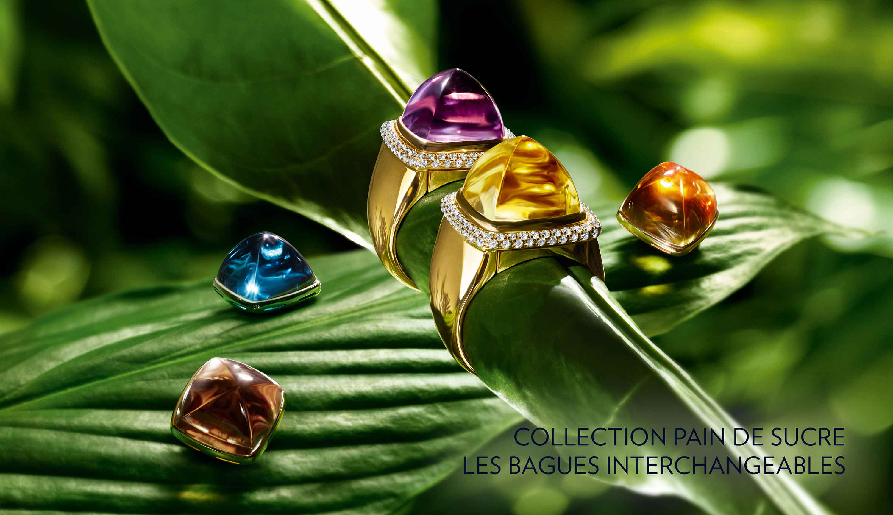 Collection Pain De Sucre Les Bagues Interchangeables